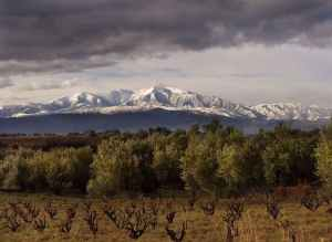 El Rosselló, comarca de la Catalunya francesa con capital en Perpinyà