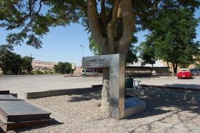 James Dean murió a unos 900 metros de este érbol