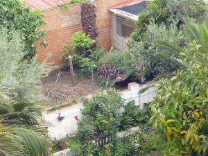 Jardín de la calle Jocs Florals nº 155