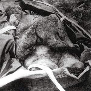 Cadáver mutilado de Andrew Helgelein.